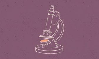 Le monde mystérieux du laboratoire d'embryologie